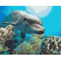 Добрый дельфин Алмазная мозаика на подрамнике LG222