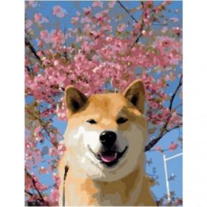 Весенний пёс Раскраска картина по номерам на холсте