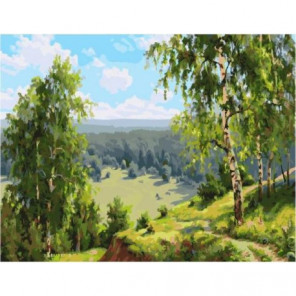 Березовая долина Раскраска картина по номерам на холсте