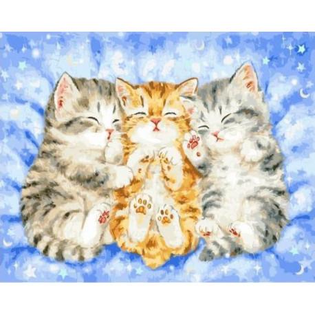 Спящие котята Раскраска картина по номерам на холсте ...