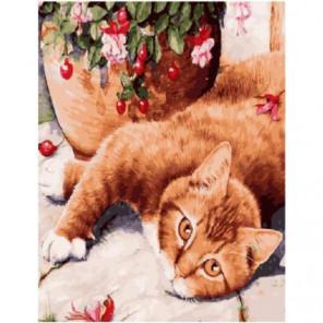 Милый котик Раскраска картина по номерам на холсте