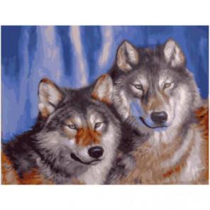 Волчья пара Раскраска картина по номерам на холсте