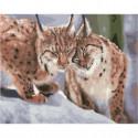 Зимние рыси Раскраска картина по номерам на холсте