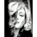 Мэрилин с котёнком Раскраска картина по номерам на холсте