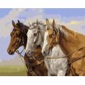 Три скакуна Раскраска картина по номерам на холсте МСА717
