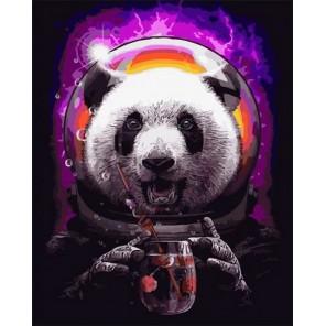 Панда астронавт Раскраска картина по номерам на холсте GX33503