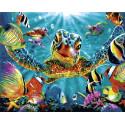 Подводный мир Раскраска картина по номерам на холсте GX35017