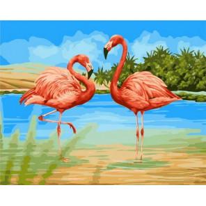 Фламинго в воде Раскраска картина по номерам на холсте GX35834