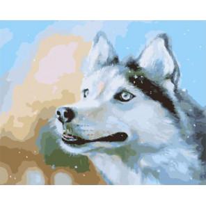 Снежный Раскраска картина по номерам на холсте PK59006
