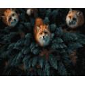 Три лисы под окном Раскраска картина по номерам на холсте ZX 23901