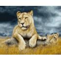 Львица в грозу Раскраска картина по номерам на холсте ZX 23827