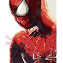 Человек паук Раскраска картина по номерам на холсте ZX 20362