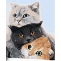 Три кота Раскраска картина по номерам на холсте AAAA-KT2-80x100