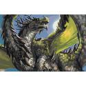Зеленый дракон Раскраска картина по номерам на холсте AAAA-GDS112-100x150