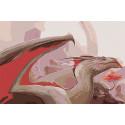Пещерный дракон Раскраска картина по номерам на холсте AAAA-GDS115