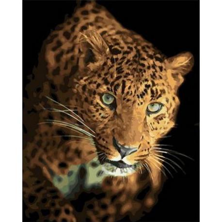 Охотящийся леопард Раскраска картина по номерам на холсте PK68078