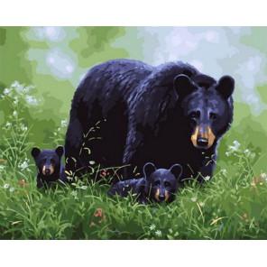 Медведица с потомством на полянке Раскраска картина по номерам на холсте PK68068