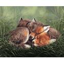 Спящие лисята Раскраска картина по номерам на холсте PK68067