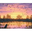 Птичья стая Раскраска картина по номерам на холсте PK68061
