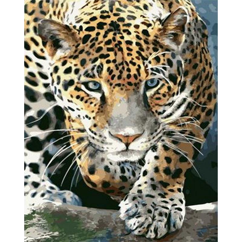 PK68059 Крадущийся леопард Раскраска картина по номерам на ...