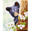 Любопытный медвежонок Раскраска картина по номерам на холсте PK68058