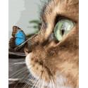 Бабочка на носу у кошки Раскраска картина по номерам на холсте GX36433