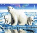 Полярная медведица с потомством Раскраска картина по номерам на холсте GX36229