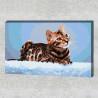 Пример в интерьере Бенгальская кошка Раскраска картина по номерам на холсте AAAA-RS017-80x120