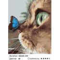 Количество цветов и сложность Котёнок и бабочка на носу Раскраска картина по номерам на холсте AAAA-JV3-80x100