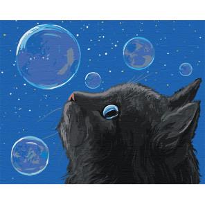 Черный кот и мыльные пузыри Раскраска картина по номерам на холсте AAAA-JV1-80x100