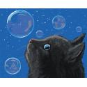 Черный кот и мыльные пузыри Раскраска картина по номерам на холсте AAAA-JV1-100x125
