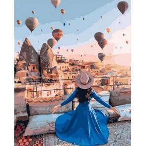 Любовь к воздушным шарам Раскраска картина по номерам на холсте GX36759