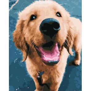 Очаровательный щенок Раскраска картина по номерам на холсте GX36599