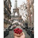 Малиновый завтрак в Париже Раскраска картина по номерам на холсте ZX 23653