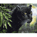 Взгляд пантеры Раскраска картина по номерам на холсте ZX 20056