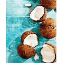 Сладкие кокосы Раскраска картина по номерам на холсте PK72049