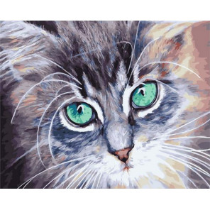 Усатый котенок Раскраска картина по номерам на холсте PK72040
