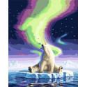 В объятьях северного сияния Раскраска картина по номерам на холсте GX31279