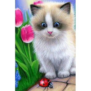 Маленький котёнок Раскраска по номерам на холсте KH0862