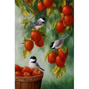 Яблоневый сад Раскраска по номерам на холсте KH0864