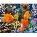 Подводный мир Алмазная мозаика вышивка на подрамнике Molly KM0667