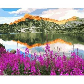 Сложность и количество цветов Иван-чай у горного озера Раскраска картина по номерам на холсте GX33257