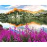 Иван-чай у горного озера Раскраска картина по номерам на холсте GX33257