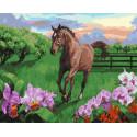 Скакун на лугу Раскраска картина по номерам на холсте MCA911