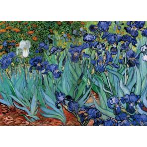 Ирисы у дороги Ван Гог Алмазная вышивка (мозаика) Color Kit