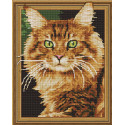 Внешний вид упаковки Рыжий кот Алмазная мозаика вышивка на подрамнике Molly KM0741