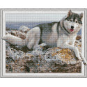 Внешний вид упаковки На берегу моря Алмазная мозаика вышивка на подрамнике Molly KM0786
