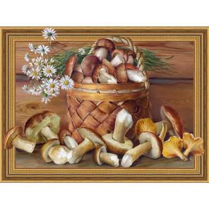Натюрморт с грибами. Бузин Алмазная мозаика вышивка на подрамнике Molly KM0651