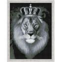 Черно-белый лев Алмазная мозаика на подрамнике QR200004