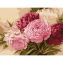 Оттенки розового Раскраска по номерам на холсте Molly KH0745